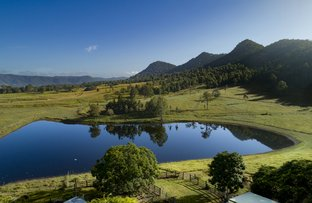 Picture of 40 Traves Road, Sandy Creek QLD 4515