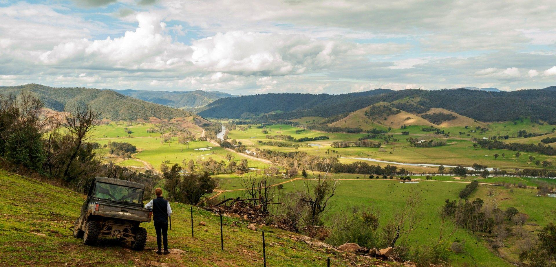 River Road, Jingellic NSW 2642, Image 0