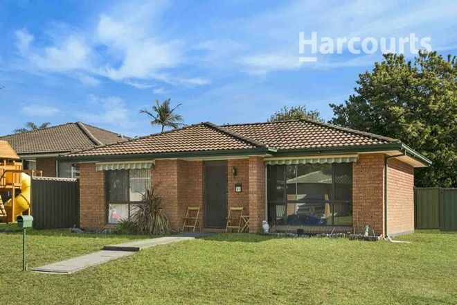 Picture of 31 Cuscus Place, ST HELENS PARK NSW 2560