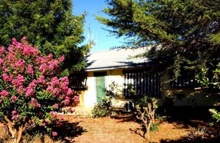 Picture of 293 Murray Street, Finley NSW 2713