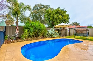 Picture of 71 St Andrews Circuit, Thurgoona NSW 2640