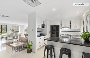 Picture of 2 Bushmills Street, Greenwith SA 5125