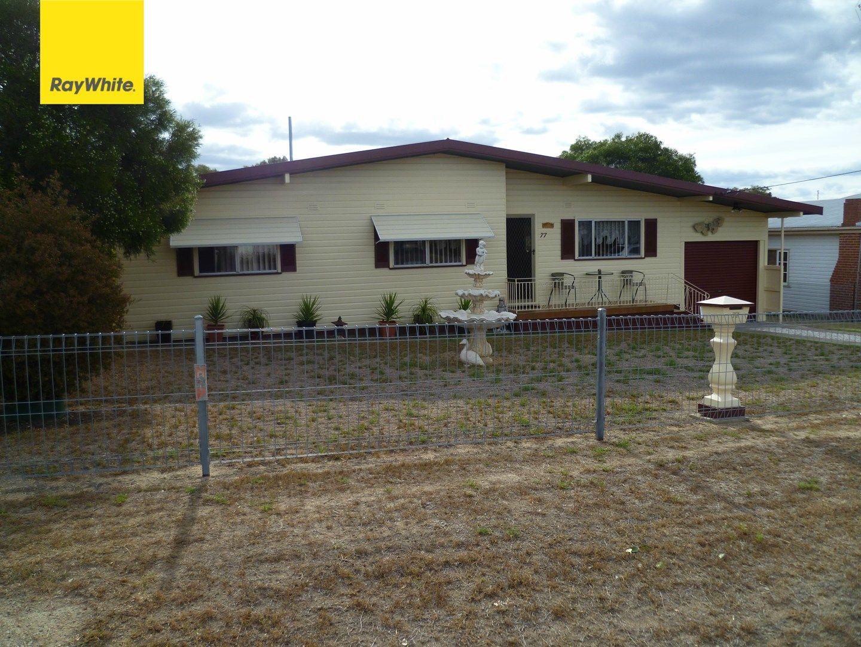 77 Inverell Street, Ashford NSW 2361, Image 0