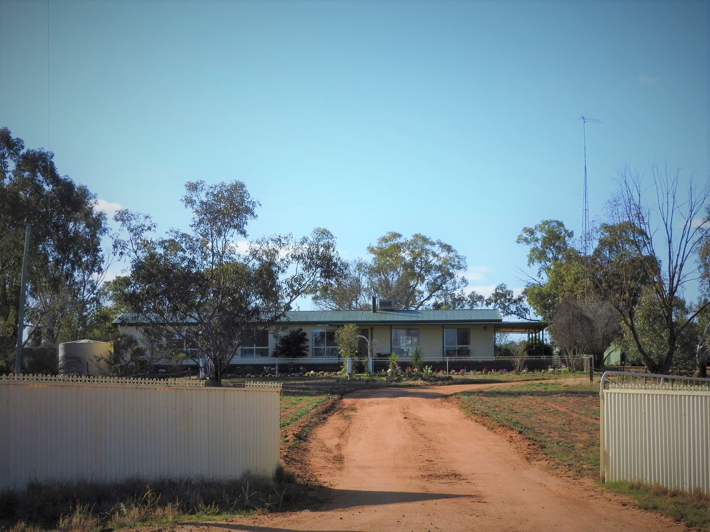 Cypress Avenue, Weethalle NSW 2669, Image 2