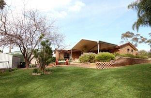 446 Riverview Drive, Berri SA 5343