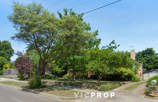 Picture of 24 Baratta Street, Doncaster East VIC 3109
