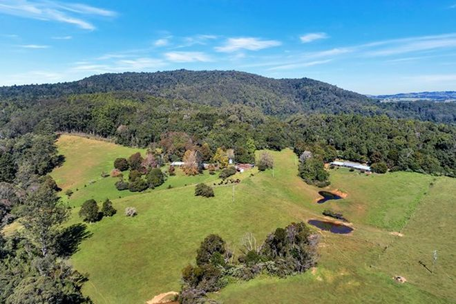 Picture of 406 Lower Bielsdown Road, DORRIGO NSW 2453
