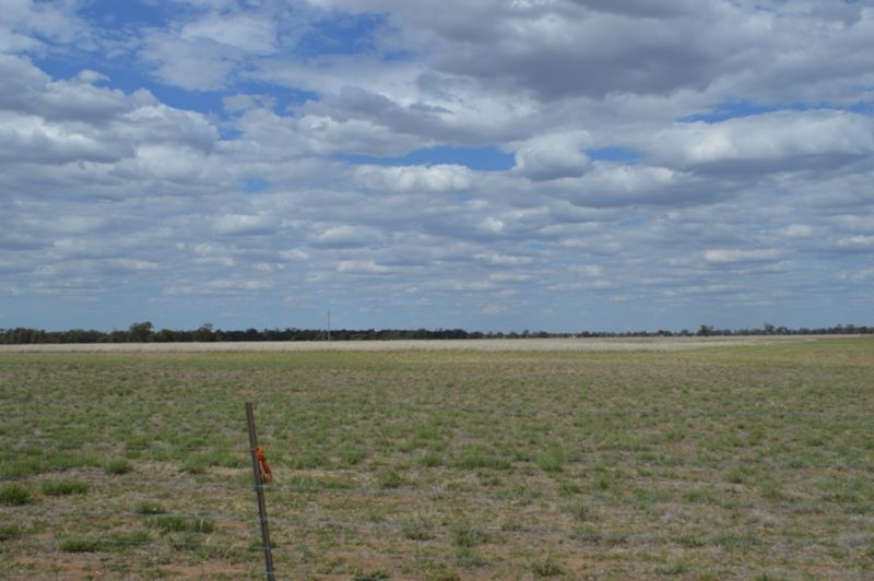 Lot 100 Oxley Highway, Collie NSW 2827, Image 2