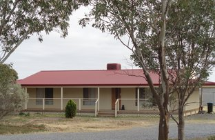 Picture of 428 Gawler Road, Two Wells SA 5501