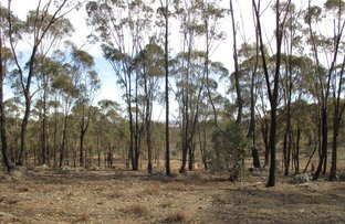 Picture of 0 Jung Yet Road, St Arnaud VIC 3478