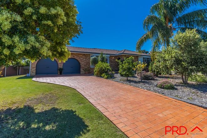 Picture of 3 Yaraan Place, TAMWORTH NSW 2340