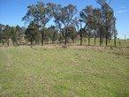 Picture of LOT 2 MIRANNIE ROAD, Singleton NSW 2330