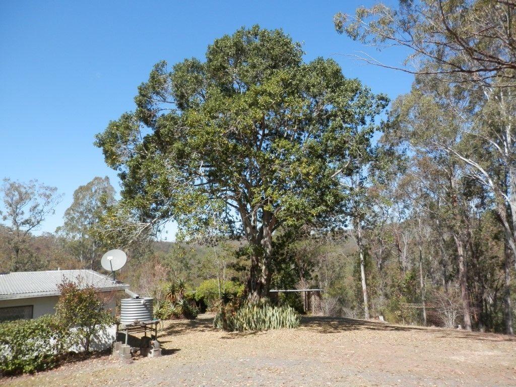 287 Ewingar Ridge Rd, Ewingar NSW 2469, Image 0