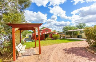 Picture of 18 Frank Street, Narrandera NSW 2700