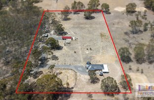 Picture of 431 Sharkeys Road, Goornong VIC 3557