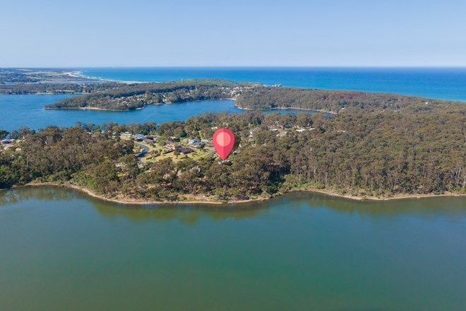 Picture of 9 Endeavour  Drive, WALLAGA LAKE NSW 2546