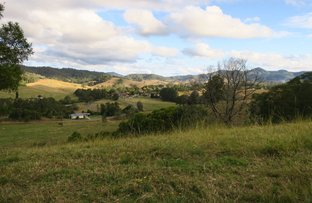Picture of 23 Butts Creek Rd, Taylors Arm NSW 2447