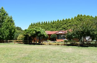 Picture of Sabons 426 Baldersleigh Road, Guyra NSW 2365