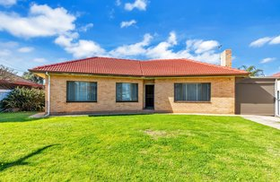 Picture of 4 Haddy Street, Cheltenham SA 5014