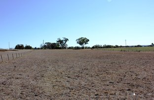 Picture of 525 Old Bundarra Rd, Inverell NSW 2360