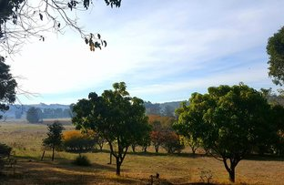Picture of Lot 111 Scaffidi Place, Donnybrook WA 6239