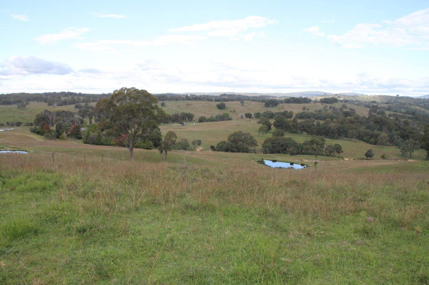 388 Quarry Road, Tenterfield NSW 2372, Image 0
