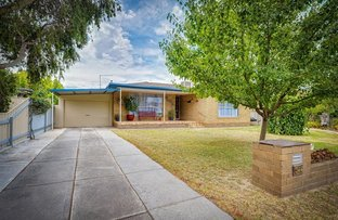Picture of 344 Shirleen Cres, Lavington NSW 2641