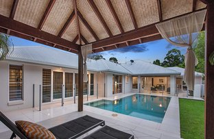 Picture of 41 Tribulation Circuit, Buderim QLD 4556