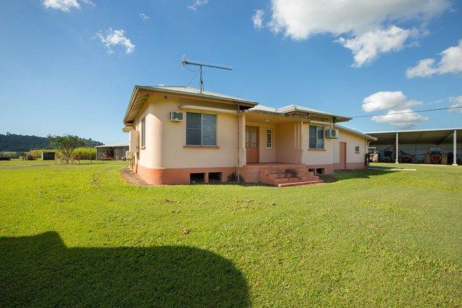 Picture of 354 McCutcheon Road, MCCUTCHEON QLD 4856