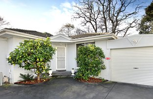 Picture of 6A Cullinane Street, Black Rock VIC 3193