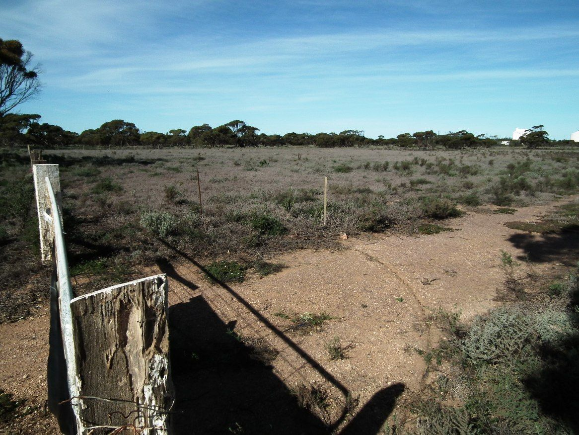 Section 222 Hornhardt Road, Cowell SA 5602, Image 2