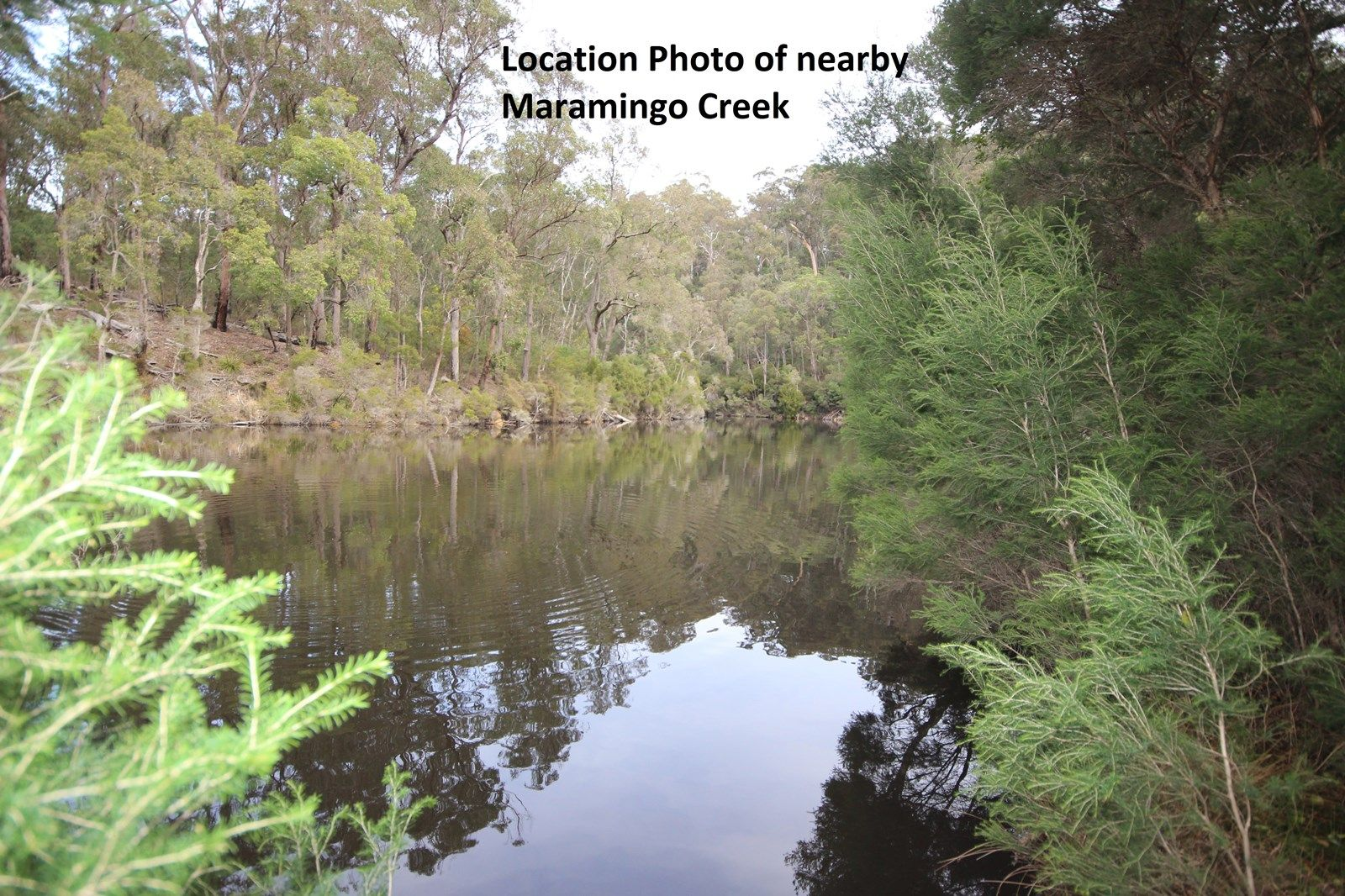 20 Beckers Rd, Maramingo Creek VIC 3891, Image 1