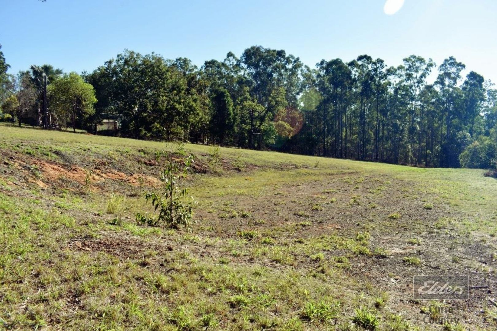 Lot 119 Trotter Road, Glenwood QLD 4570, Image 1