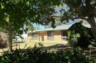 Picture of 28 Battunga Road, Meadows SA 5201