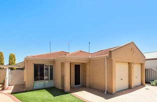 Picture of 3B Arbuckle Place, Gwelup WA 6018