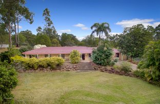 Picture of 29 Beech Drive, Cashmere QLD 4500