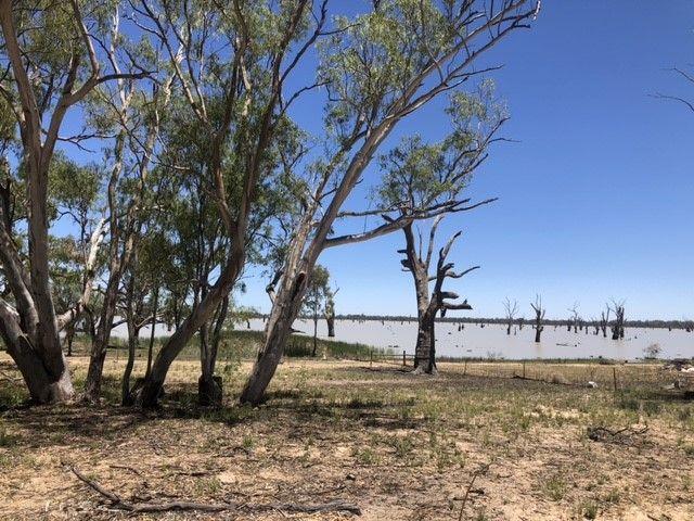 142 Dry Lake Road, Euston NSW 2737, Image 1