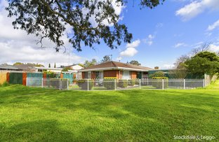 Picture of 8 Parkwood Way, Traralgon VIC 3844
