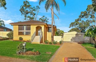 Picture of 136 St Clair Avenue, St Clair NSW 2759
