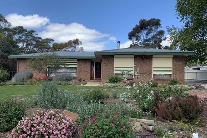 Picture of 907 Stockwell Road, ANGASTON SA 5353
