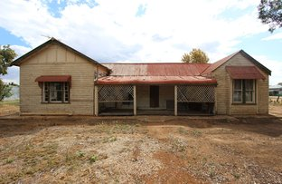 Picture of 158 Camp Street, Temora NSW 2666