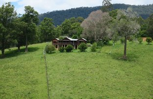 Picture of Buckra Bendinni NSW 2449