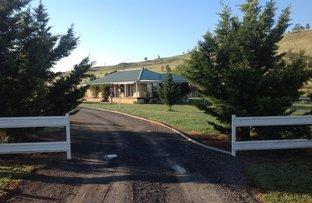 1587 Rye Park Road, Boorowa NSW 2586