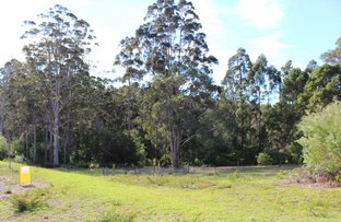 Picture of 16 Honey Possum Court, Denmark WA 6333