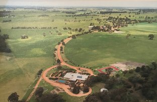 Picture of Ronneby Park, 670 Youngs Rd, Beaufort River WA 6394