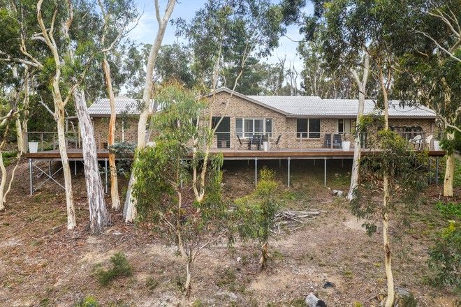 Picture of 17 Scribbly Gum Avenue, TALLONG NSW 2579