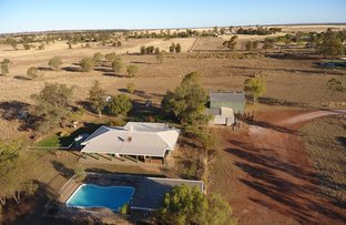 Picture of 158 Duke S, Roma QLD 4455