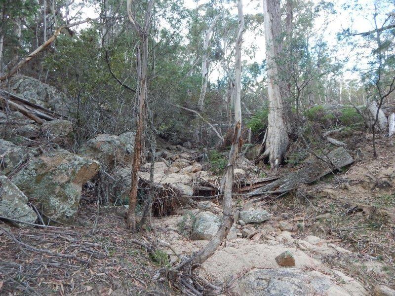Lots 119-125/127 New Line Road, Glen Allen NSW 2631, Image 2