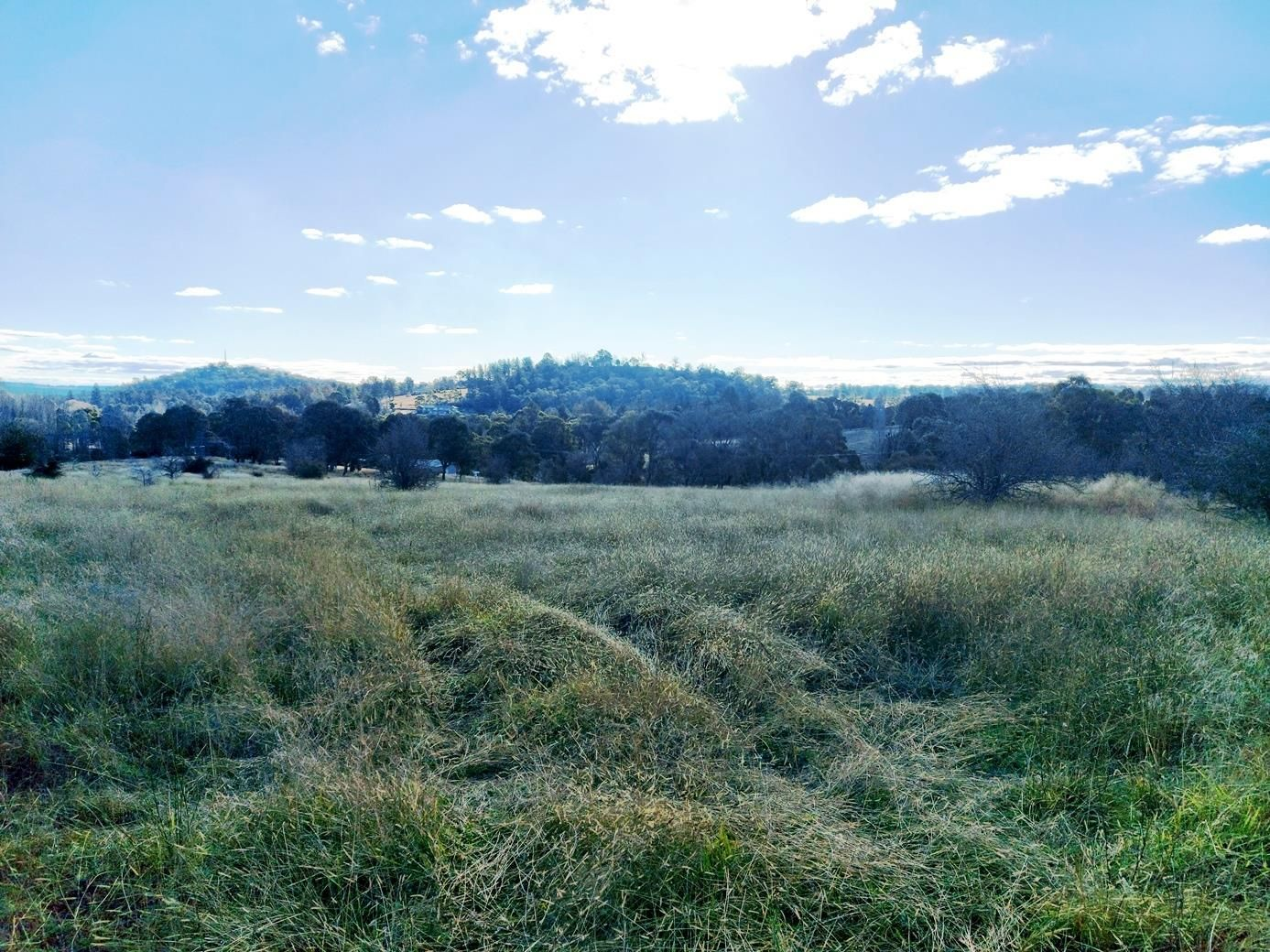 Part 44 Barleyfields Road, Uralla NSW 2358, Image 1