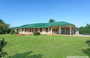 Picture of 639C Coolangatta Road, Berry NSW 2535